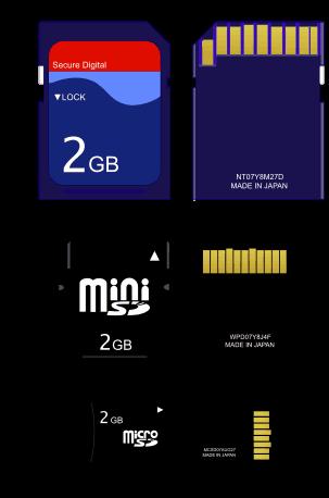 Dimensione delle schede SD, mini SD e micro SD.